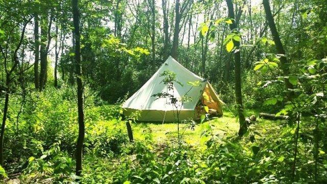5 kinh nghiệm cắm trại trong rừng