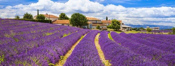 Vùng Provence