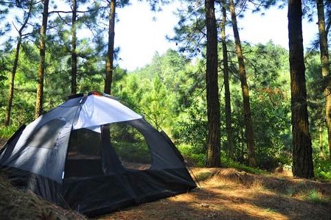 Cắm trại Ba Vì