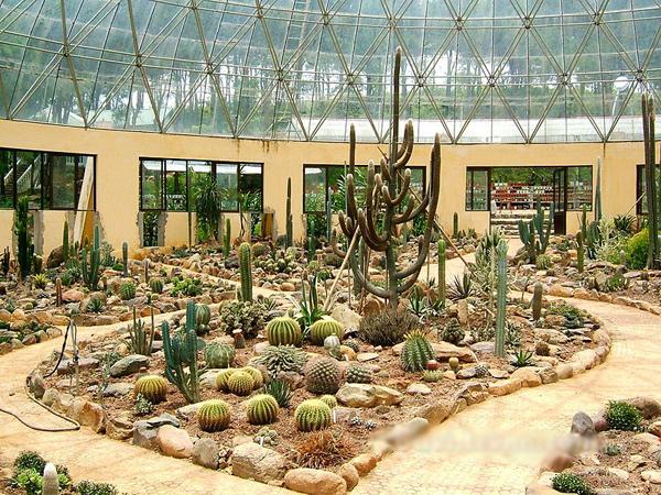Khu vườn Xườn Rồng, Ba Vì