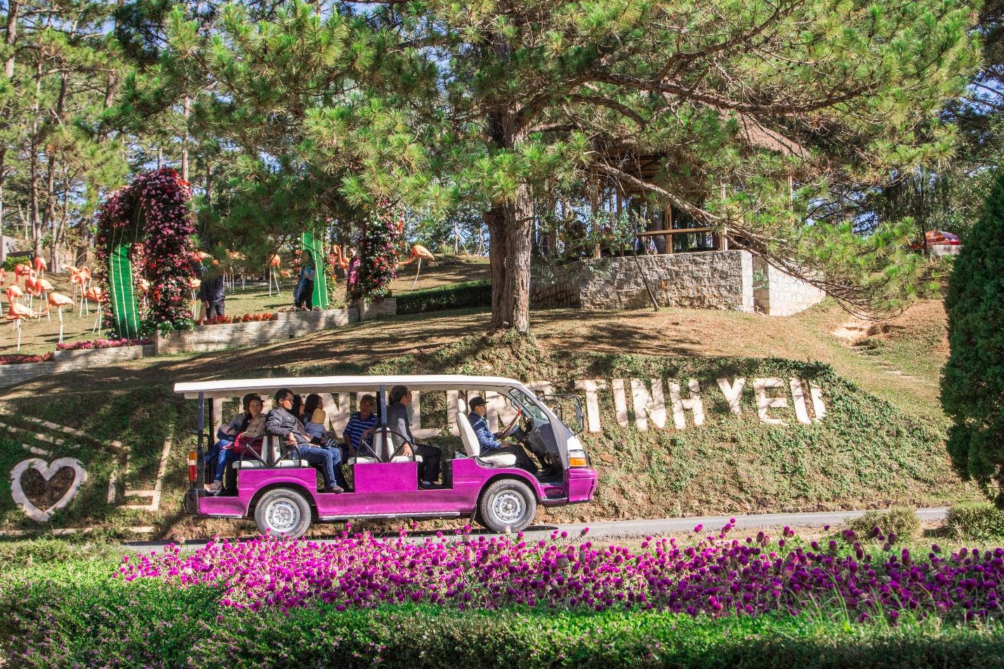 Thung lũng Tình Yêu địa điểm cắm trại ở Đà Lạt lãng mạn